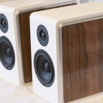 CSS Model P215 Bookshelf Speaker Kit – High-End Sound for Under $1,000